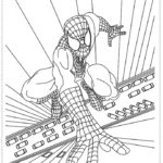 איש העכביש דפי צביעה