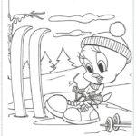 טווטי עושה סקי לצביעה