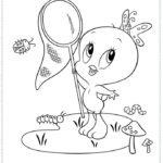 טוויטי תינוק לוכד פרפרים לצביעה