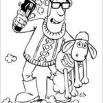 שון כבשון לצביעה