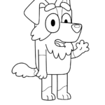 בלואי הכלב לצביעה