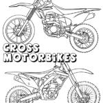 צביעה אופנועים 1